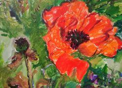 Празнично намаление на картини на Тереза Зиковска